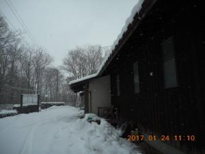 H290124雪 (7)