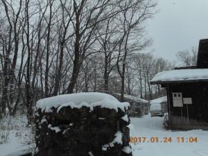 H290124雪 (2)