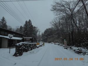 H290124雪 (3)
