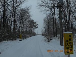 H290124雪 (4)