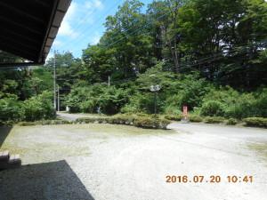 H280720業者下刈り (1)