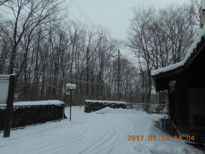 H290124雪 (1)