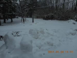 H290124雪 (8)