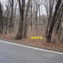 生活利便性に優れた緑豊かな那須高原別荘地 No.161