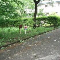 芭蕉温泉が引ける分譲地 No.167