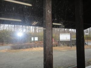 窓 前 (1)