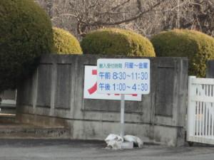 芭蕉倉庫 (6)