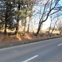 【管理費不要別荘地外】公道に接する約327坪の平坦地!!管理費不要の定住エリア。【那須高原移住】