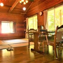 【公営水道】人気の平屋建て1LDK。別荘・定住に便利な立地です。【那須高原田舎暮らし】